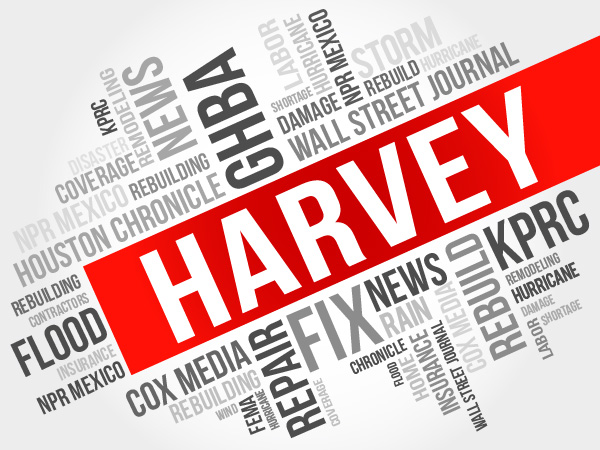 harvey ghba media word cloud
